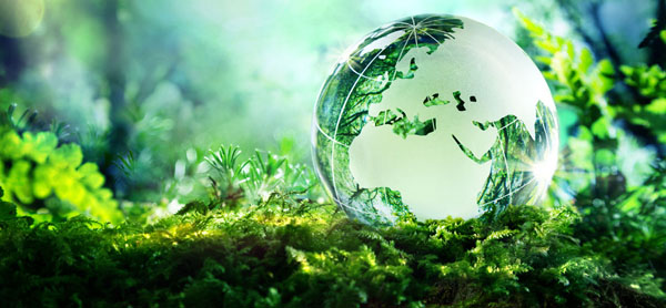 Environmental Consultancy Services Philippines